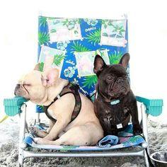 Nous on aime la plage... ...