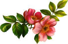 Carta de amor para mi hija Romantic, Pretty, Happy, Flowers, Poem, Birthday Words, Cute Words, Happy Birthday Mom, Dear Daughter