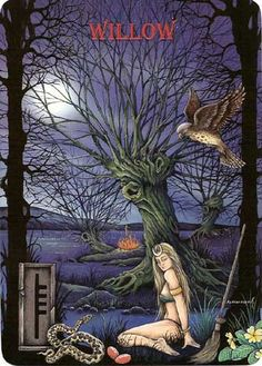 Ogham The Celtic Oracle Willow...magical properties of Willow