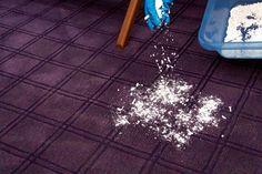 Come pulire i tappeti | Un tutorial unico dove scoprire come pulire e lavare a fondo i tappeti per togliere ogni residuo di sporco e polvere in modo green.