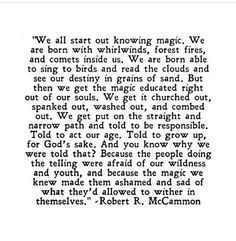 we are born with whirlwinds, forest fires and comets inside us   Robert R McCammon