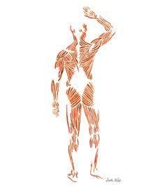Sistema muscular imprimir acuarela arte del cuerpo por LyonRoad