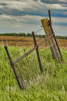 Old Farm Gate, Webster County, Iowa Country Charm, Country Life, Farm Gate, Old Fences, Old Farm, Iowa, Gates, Photography, Photograph