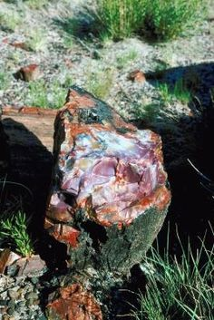 How to Find Agate Rocks