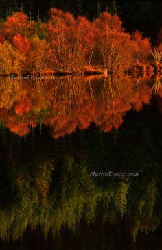 Autumnal reflections in a Scottish Highland Loch. Scotland; photo by Barbara R. Jones