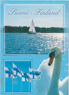 Log in on Postcrossing Finnish Words, Swans, Puzzle Pieces, Best Cities, Helsinki, Homeland, Travel Posters, Norway, Sweden