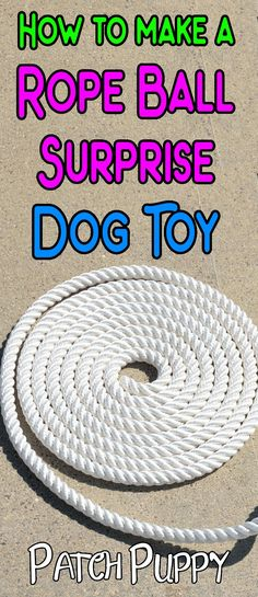 outdoor dog toys,dog toys interactive,smart dog toys,dog toys for chewers Smart Dog Toys, Diy Dog Toys, Outdoor Dog Toys, Kong Dog Toys, Dog Water Bowls, Interactive Dog Toys, Diy Dog Bed, Pet Gear, Tutorials