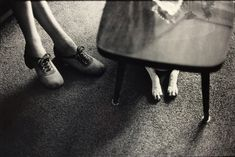 Available for sale from A Gallery for Fine Photography, Elliott Erwitt, Netherlands (feet and dog paws) Silver Gelatin, 16 × 20 in Elliott Erwitt Photography, Susan Sontag, Documentary Photographers, Magnum Photos, Dog Paws, Dog Houses, Inventions, Street Photography, Netherlands