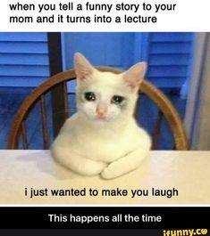 Funny Cats Memes In Spanish Latest Funny Jokes, Very Funny Memes, Funny School Jokes, Cute Funny Quotes, Some Funny Jokes, Stupid Memes, Stupid Funny Memes, Funny Relatable Memes, Videos Funny