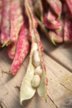 About cranberry beans: they look pink-and-white speckled string beans Borlotti Beans Recipe, Bean Recipes, Healthy Recipes, Healthy Food, Cranberry Beans, Eat Right, Farmers Market, Stock Photos, Fresh