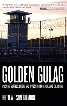 Golden Gulag: Prisons, Surplus, Crisis, and Opposition in Globalizing California: Gilmore, Ruth Wilson: 9780520242012: Books - Amazon.ca Political Economy, Politics, Three Strikes Law, Ruth Wilson, Criminology, World History, Books Online, Nonfiction, Ebooks