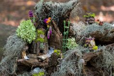 Client made fairy home on display at Woodlands Garden in Decatur