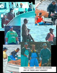 Murderers of Taiji, Japan. These merciless butchers drive entire pods of Dolphin & small Whale during the months of September to March every year averaging around 2,000 Cetacea. They claim their practice is part of 'tradition' and 'heritage' however this has only been occurring since around 1968 when the demand for Dolphins for 'Marine Parks' AKA prisons needed to extort the Mammals for 'entertainment'... And earn money at the expense of their exploitation.