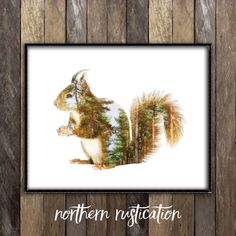ETSY double exposure of a handsome squirrel combined with beautiful woodlands