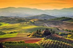 Tuscan landscape . . . It really looks like this