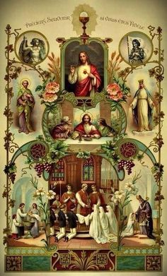 The Sacraments of Initiation, which cause us to bloom from the True Vine of Jesus Christ. In Him, we live!