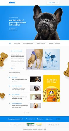 Home page / blog design for the site Chewy.com. Loved how this site turned out. Such a fun company and they had such great colors to work with. Cheers to puppies in 2017. Also attached an email d...