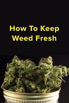 How to Keep Weed Fresh                                                       …