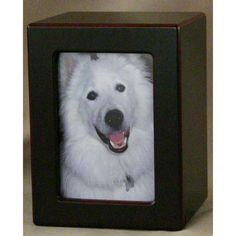 cat Urn Photo Box cat Urn Cherry Wood Finish {up to cat} -- Special cat product just for you. Memorial Stones, Cat Memorial, Pet Urns, Dog Care, Pet Supplies, Cat Lovers, Kitty, Memories, Pets