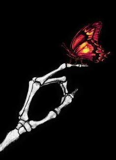 Use your Illusion Art Sketches, Art Drawings, Butterfly Mandala, Skeleton Art, Skeleton Drawings, Skull Wallpaper, Aesthetic Iphone Wallpaper, Skull Art, Aesthetic Art