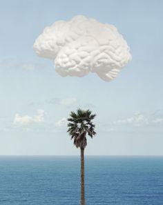 John Baldessari created this print for Counter Editions in 2009. The print is a combination of the imagery from the installation Brain/Cloud—part of his retrospective exhibition at Tate Modern. Palm trees and clouds are recurring motifs in Baldessari's work, and having lived and worked in California for most of his life  Brain/Cloud (With Seascape and Palm Tree) could be seen as an image from the memory of a quintessentially Californian conceptual artist.