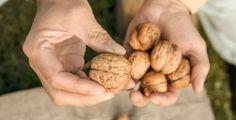 Co s ořechy, když už nemají tu výbornou chuť?