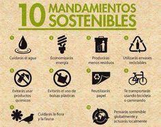 Sostenibilidad en 10 mandamientos #navarro #herbolario #filosofía