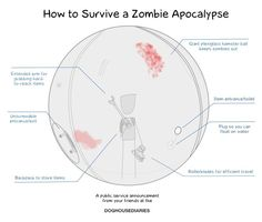 How to survive a zombie apocalypse.