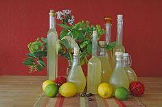 Zitronen - Sirup mit Pfefferminze und Zitronenmelisse, ein schönes Rezept aus der Kategorie Getränke. Bewertungen: 61. Durchschnitt: Ø 4,5.