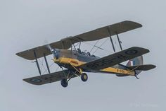 Tigermoth aircraft