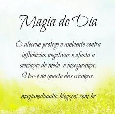 Magia no Dia a Dia: Magia do Dia: alecrim  http://magianodiaadia.blogspot.com.br