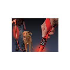 LED Lighted Nylon Safety Dog Leash by Nite Ize - Red by Nite Ize. $14.99. The Nite Ize LED Lighted Nylon Safety Dog Leash is great for walking dogs at night because the patented L.E.D. illumination is visible up to 1000 feet in the dark. Recommended uses include early morning and late evening walks, camping, and hiking. The L.E.D. illumination has two modes: steady glow and flashing (which is ideal for dogs in high traffic areas) and can last up to 100,000 hours. In ad...