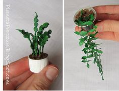 PLANET PARCZUN: Miniature potted plants with fine listeczkami - tutorial