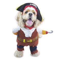 Funny Pet Clothes Pirate Dog Cat Cosplay Costume Suit Corsair Dressing up Party Apparel for Cat Dog -- Continue to the product at the image link. (This is an affiliate link and I receive a commission for the sales) Chat Halloween, Pet Halloween Costumes, Funny Costumes, Pet Costumes, Halloween Christmas, Pirate Halloween, Halloween Clothes, Halloween 2015, Christmas Dog