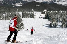 http://www.polen.travel/sv/skidor-och-snowboard/