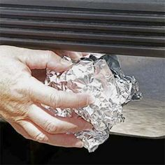Crumple a piece of foil, and use it to rub rust spots off car bumpers and shower-curtain rods.