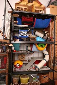 Small animal dream house :)AWESOME!!  I see 4 rats in there!