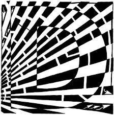 Image result for bridget riley art projects