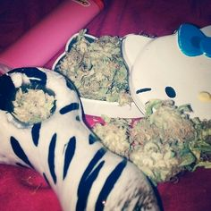 zebra stripped glass spoon pipe.  weed.  hello kitty.