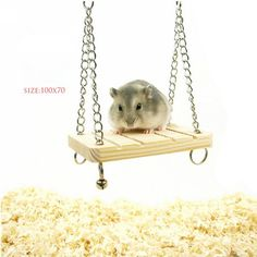 Mouse Rat Parrot Hamster Bell Swing with Chain Small Bell Suspension Poppled Hanging Ladder Wooden Toy #>=#>=#>=#>=#> Click on the pin to check out discount price, color, size, shipping, etc. Save and like it!