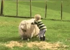 """georgetakei: """" This kid's looking a little sheepish. Source: Epic Parenting """""""