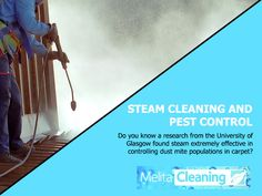 Steam Cleaning and Pest Control - Do you know a research from the University of Glasgow found steam extremely effective in controlling dust mite populations in carpet? Steam Cleaning, Dust Mites, Cleaning Service, Pest Control, Glasgow, Did You Know, Work Hard, University, Carpet
