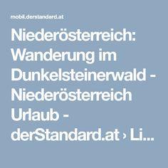 Niederösterreich: Wanderung im Dunkelsteinerwald - Niederösterreich Urlaub - derStandard.at › Lifestyle Woodland Forest, Darkness, Vacation