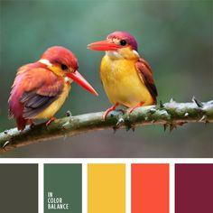amarillo y anaranjado, anaranjado, color amarillo vivo, color guinda, color mermelada de frambuesa, coral, elección del color, frambuesa, oliva, selección de colores, verde oscuro y verde claro, verde y anaranjado.