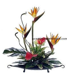 buy bird of paradise flower arrangement
