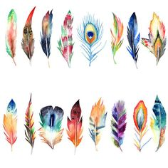 watercolor boho feather clipart aquarel feather clipart hand