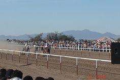 Carreras de caballo diversión en Caborca Son.Mx