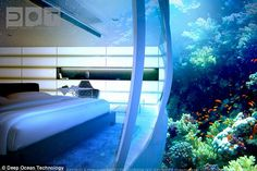 Underwater Dubai hotel. There is a wall of glass in every room, looking into coral reefs and varying sea life.