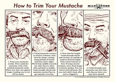 How to Trim Your Mustache: An Illustrated Guide