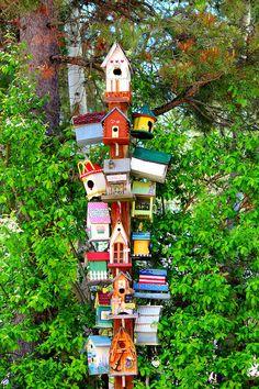 Bird Condo Cascade Id by Jo Sheehan – Garden Projects Decorative Bird Houses, Bird Houses Painted, Bird Houses Diy, Painted Birdhouses, Diy Birdhouse, Homemade Bird Houses, Bird House Feeder, Diy Bird Feeder, Bird House Plans